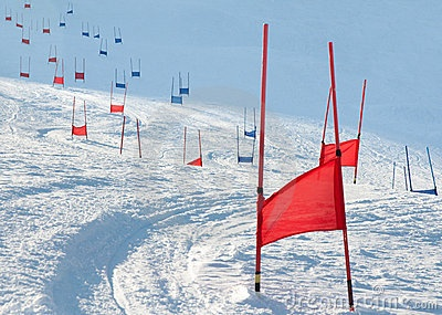 I LOVE alpine racing <3