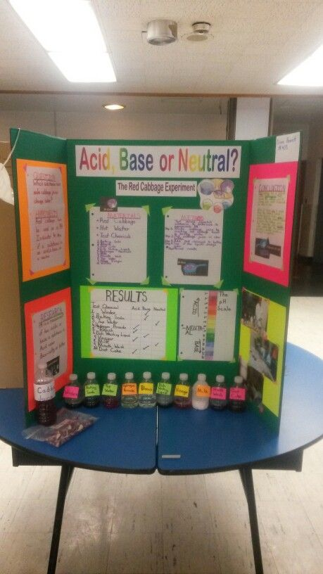 4th Grade Science Fair Project