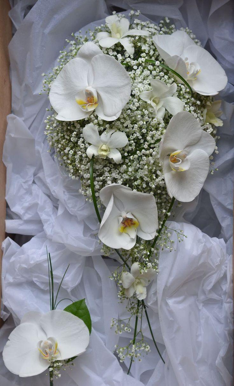 Google Image Result for http://1.bp.blogspot.com/-tsEnR3JxPEs/T6109lFB09I/AAAAAAAABm0/MSakAyLRTCI/s1600/white-orchid-gypsophila-bouquet-teardrop-modern.jpg