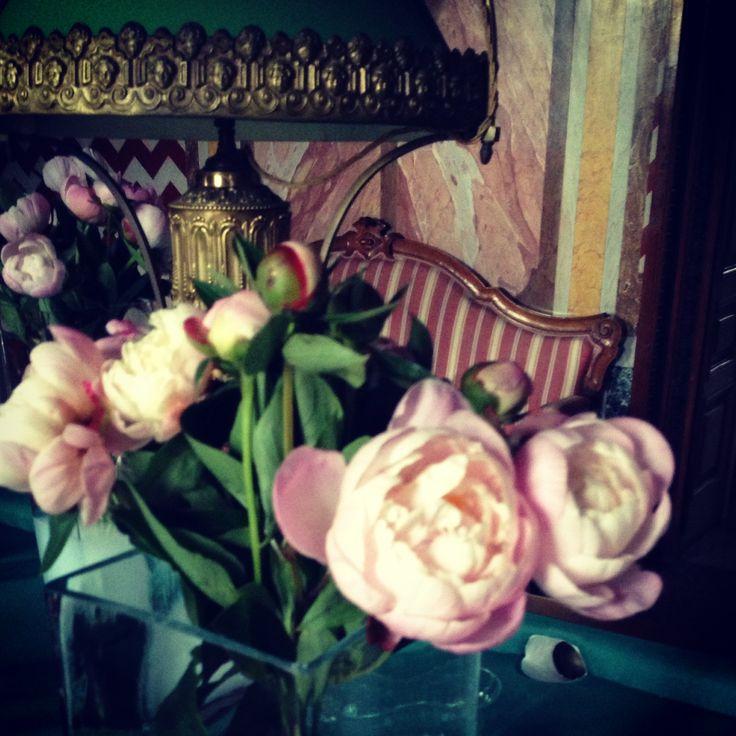 peonie, fiori, sala del biliardo