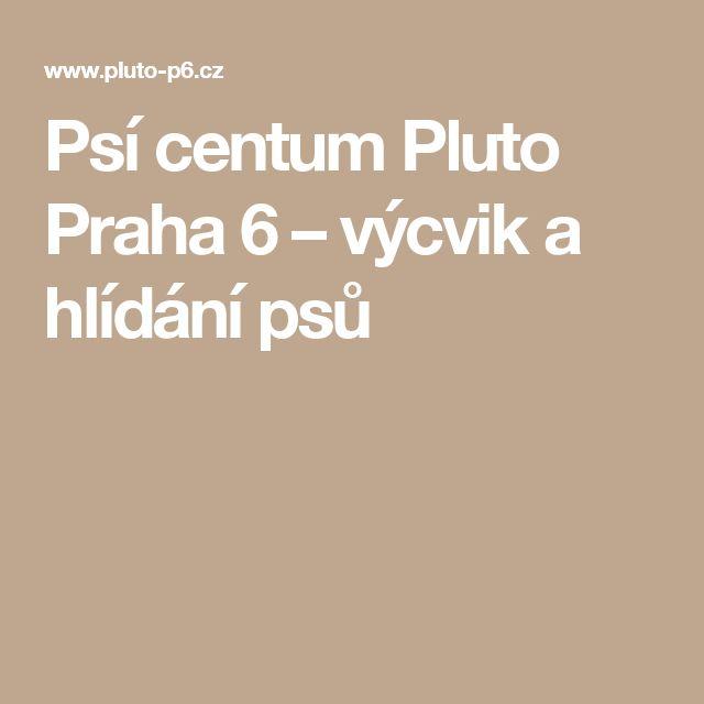 Psí centum Pluto Praha 6 – výcvik a hlídání psů