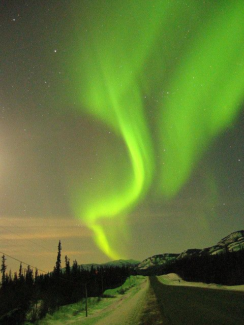 yukonBuckets Lists, Amazing Photography, Mothers Nature, Northern Lights, Aurora Borealis, Dark Sky, Nature Photography, Mother Nature, Bucket Lists