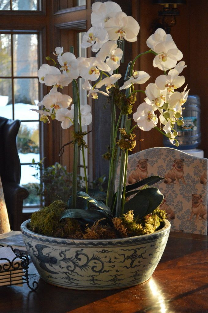Orchids in large bowl.