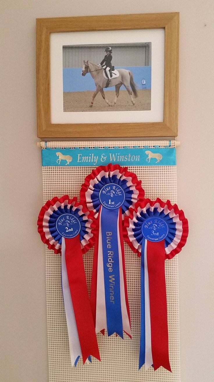 Ideas for your pony show ribbons ,