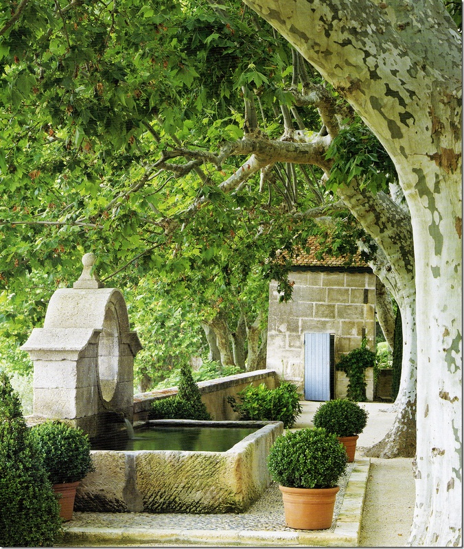 80 Best French Provincial Gardens Images On Pinterest