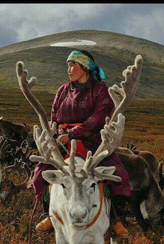 Mongólia nomadas foto de Hamid Sardar