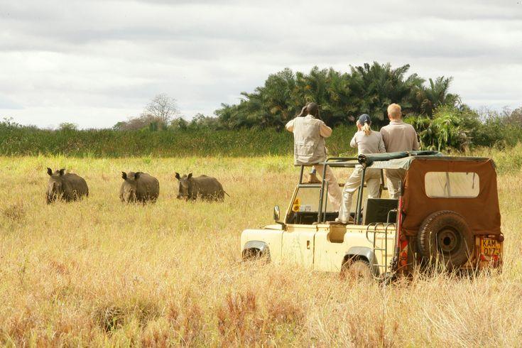 One of the best safari adventures is in #Kenya