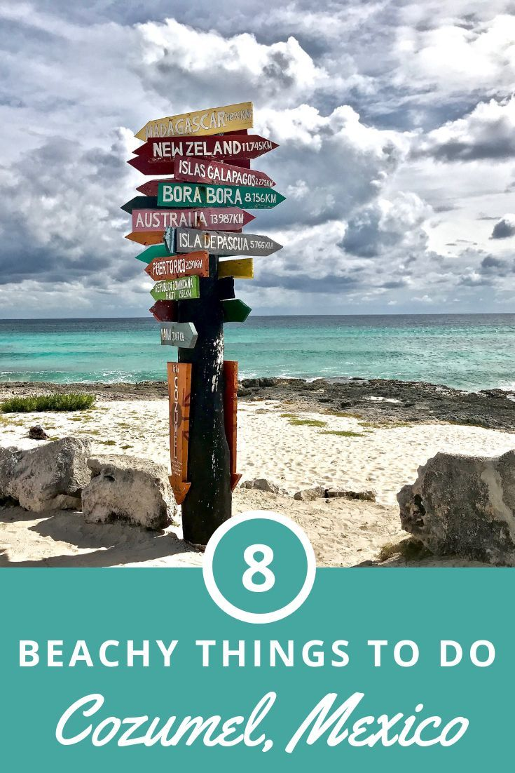 Check Out These Suggestions Of Fun Things To Do In Cozumel Mexico