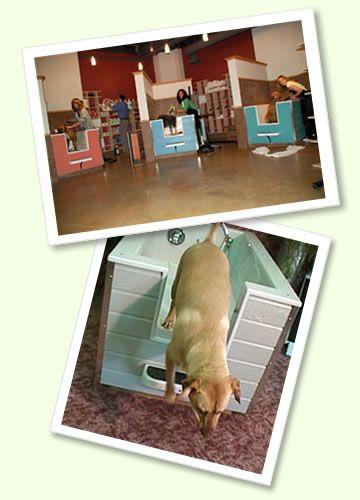48 best dog store images on pinterest grooming salon dog store vienna pet spaw self servefull serve pet wash professional grooming solutioingenieria Gallery