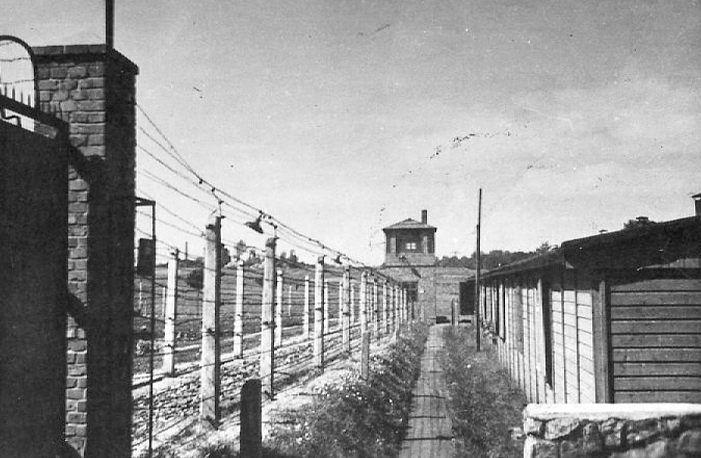 """On 3 July 1944 9 prisoners escaped from an Auschwitz sub camp """"Eintrachthütte"""" through a tunnel under the fences: a Pole  Władysław Rutecki (no. 175641) Polish Jew - Leib Ziziemski (vel Zizmemski no. 98143) Russians - Luka Didenko (vel Lizniow no. 175582) Jakob Wiszniewskij (no. 125038) Iwan Vasiukov(no. 175728) Sergiej Michalevskiy (no. 175769) Nikola Titow (no. 175696) Nikolaj Iwanenko (no. 129985) Fedor Ryschynovytsch (vel Griszanowicz vel Riszanowicz no. 175681). In the spring of 1944 a…"""
