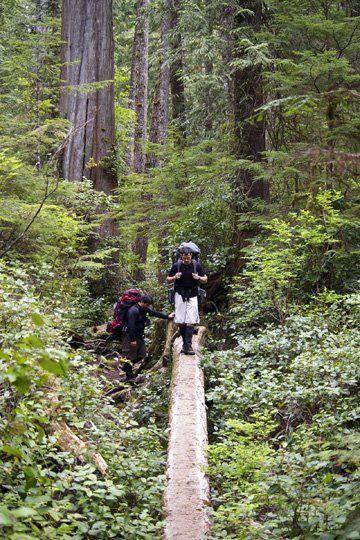 Hiking the West Coast Trail, Vancouver Island, British Columbia, Canada.British Columbia Canada, Camps Canada, Vancouver Islands, Camps Outdoor, West Coast Trail, Hiking Canada, Poker Chips, Camping Outdoors, British Columbia Camps
