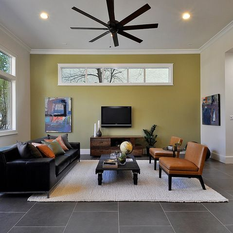 Sherwin Williams Bamboo Shoot Design Ideas Pictures