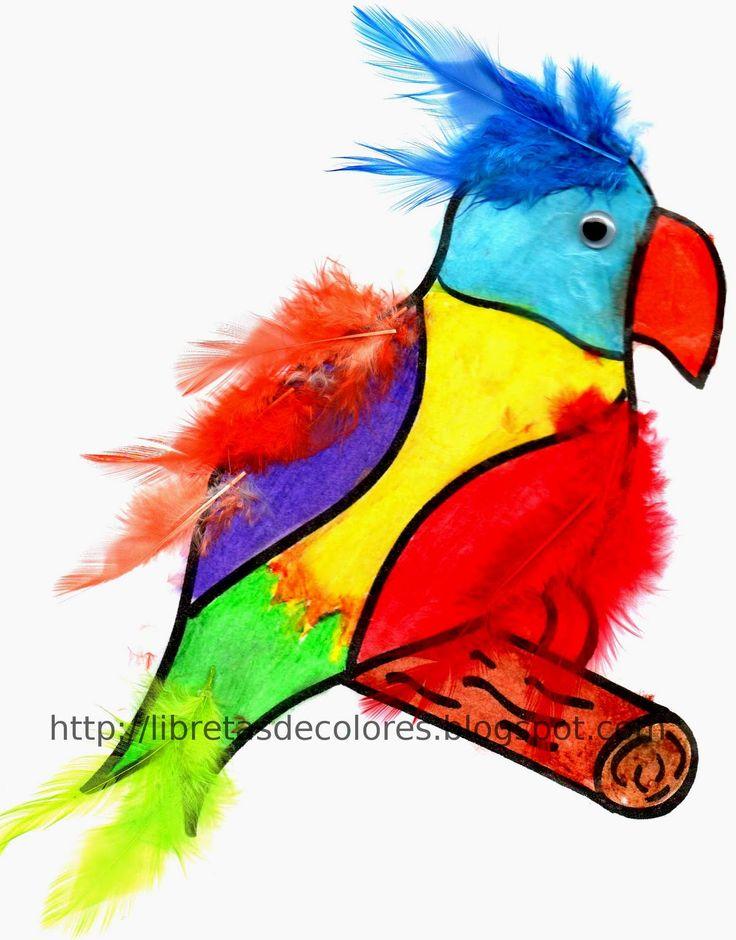 Un loro muy colorido