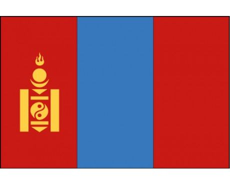 This is the Mongolian Flag. through the history of the flag's design it hasn't changed much from the original.