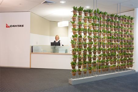Vertical Garden Schiavello Vertical Garden  For a screen divider with a difference, you can't go past the Schiavello vertical garden tower from Ambius Indoor Plants.  This vertical garden display looks sensational and is big on design, offering a mass planting of very small plants in pots.