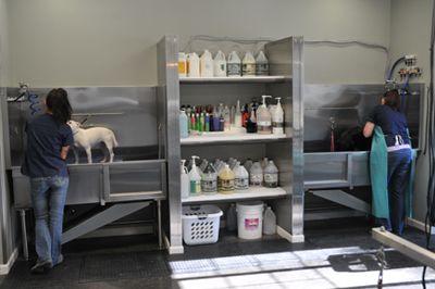 -repinned- Dog Grooming Tubs