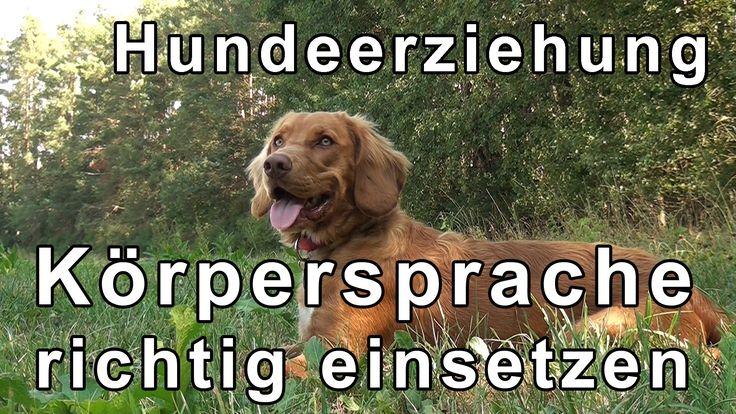 Hundeerziehung & Hundetraining Übungen mit Tipps zum Thema Körpersprache...