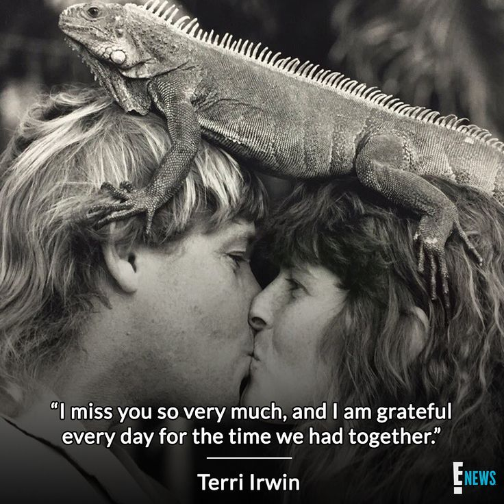 Terri Irwin remembers Steve Irwin on what would have been her and The Crocodile Hunter's 25th wedding anniversary. ❤️ (: Twitter)