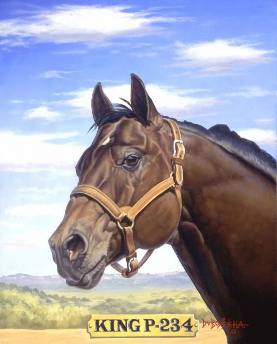 King P 234 Horses for Sale | King P234 Greeting Card