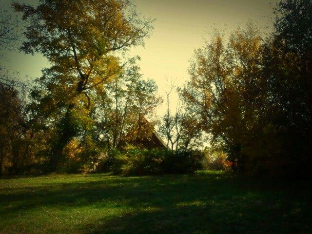 Debrecen,  Pallag .. elmosódott emlék kép