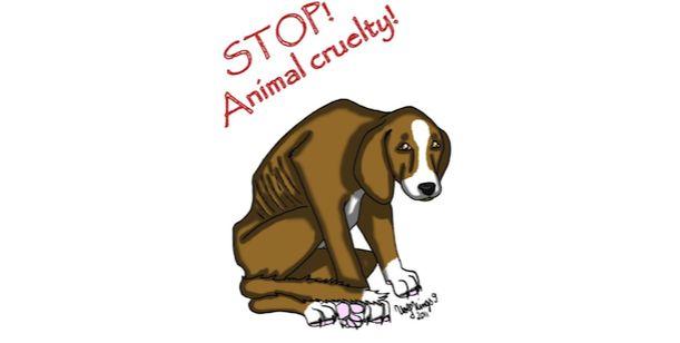Podepište, prosím! --> PETICE za odebrání psů a zákazu chovu tyrankám z Palárikova!