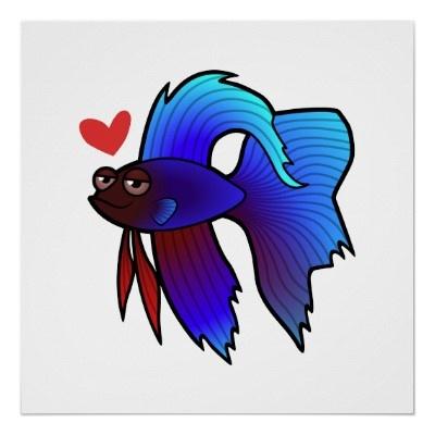 ✔️❤️My Betta Fish: Bruce Willis