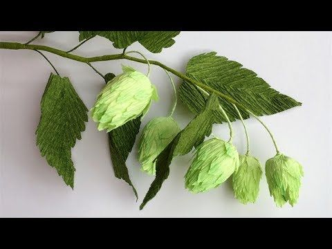 (55) ABC TV | How To Make Hops Paper Flower From Crepe Paper - Craft Tutorial - YouTube