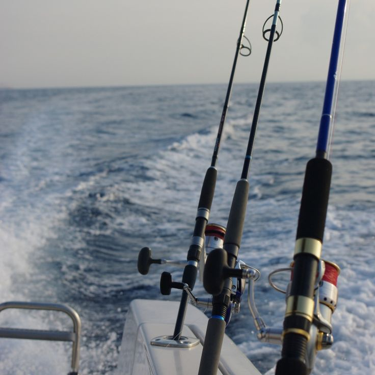 31 best Fishing Supplies images on Pinterest