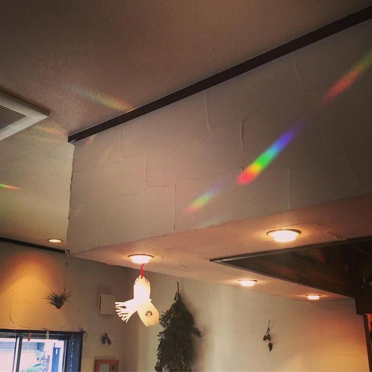 いいね!26件、コメント1件 ― @emmaruriのInstagramアカウント: 「いつかの、虹。 もう、まだ、6年。忘れてはいけない、囚われ過ぎても良くない、出来ることをと思う1日。 少しでも多くの人が笑顔で過ごせますように。 黙祷を捧げます。 #311 #東日本大震災 #震災…」