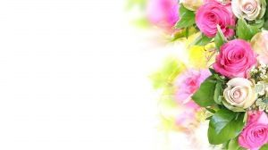 Preview wallpaper roses, flowers, composition, tenderness, white background 1920x1080