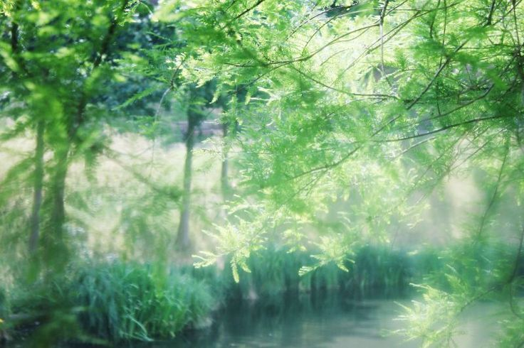 by Kashia  Serzysko www.photobykashia.webnode.nl