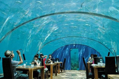 Ithaa Underwater Restaurant Located off the coast of Antarctica