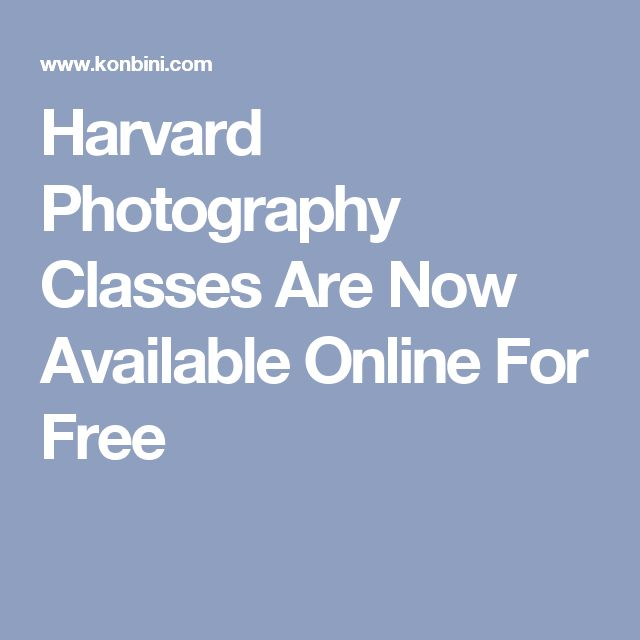 Harvard Photography Classes Are Now Available Online For Free