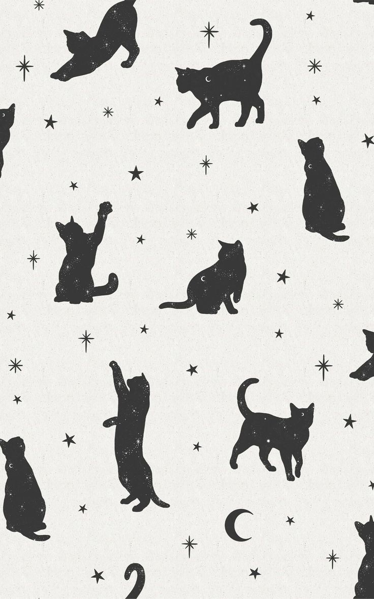 Named after Sabrina the witch's talking feline friend, Salem is a magical pattern wallpaper mural full of cute black cats. The charcoal black colour of the frolicking cats against the white paper-texture background has a minimalist monochrome look that makes sure this wallpaper will match any home decor you already have. A moon and star motif feature in this design, too, ready to give your room a relaxed mystical mood. Blue Wallpaper Iphone, World Map Wallpaper, Halloween Wallpaper Iphone, Cat Wallpaper, Blue Wallpapers, Witchy Wallpaper, Forest Wallpaper, Unique Wallpaper, Salem Cat