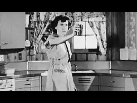 Space Spraying Fly & Mosquito Pest Control 1954 Communicable Disease Center https://www.youtube.com/watch?v=n75Ns4ht12U #CDC #PestControl #pesticide