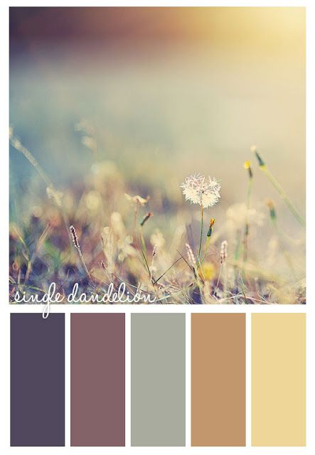 Natural 'dandelion' palette. Gorgeous neutral shades for your vertical blind window dressing.