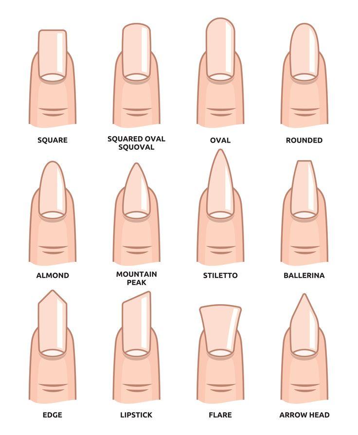Dalle forme più classiche alle più bizzarre: come preferite le vostre #unghie? #nail #nailart #vanesia