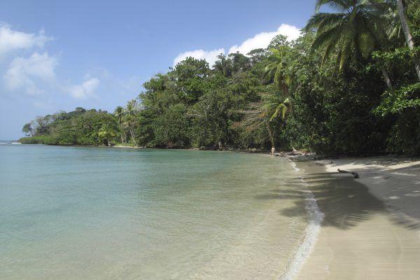O hotel te leva a praias caribenhas para você desfrutar de mar cristalino e areia branca.