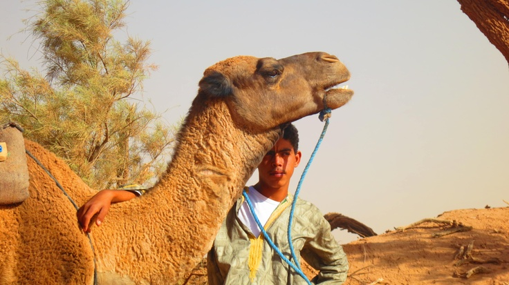 A Mans Best Friend......in the Sahara