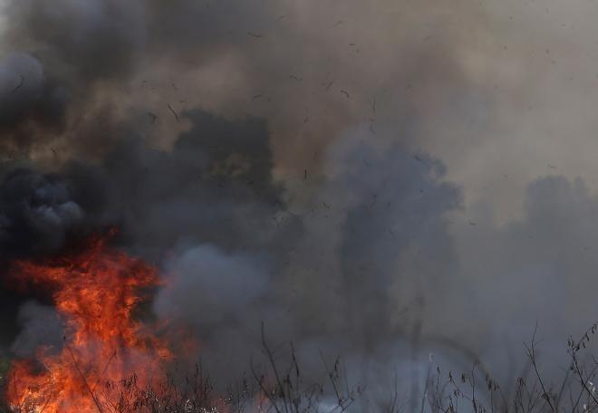 Covesia.com - Sekitar 40 hektare lahan perkebunan karet dan gambir di Kabupaten Lima Puluh Kota, Sumatera Barat terbakar. Kebakaran lahan tersebut terjadi di...