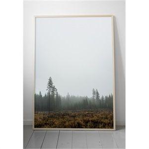 Affiche Skog