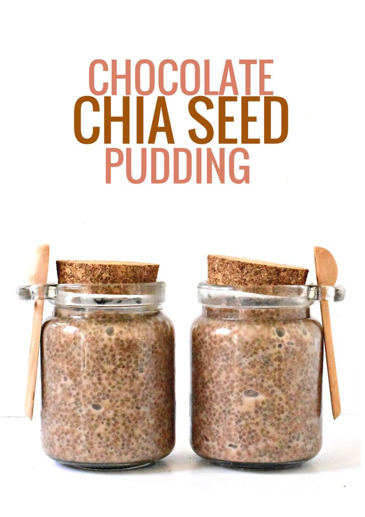 Chocolate Chia Seed Pudding--A healthy, raw breakfast ready in minutes!