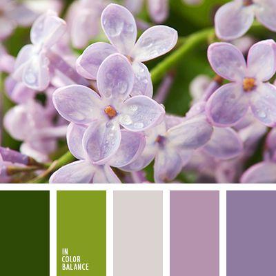 lilac tones
