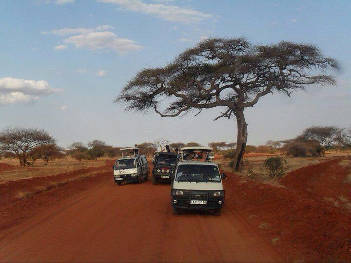 Safari // Tsavo East. Kenya.