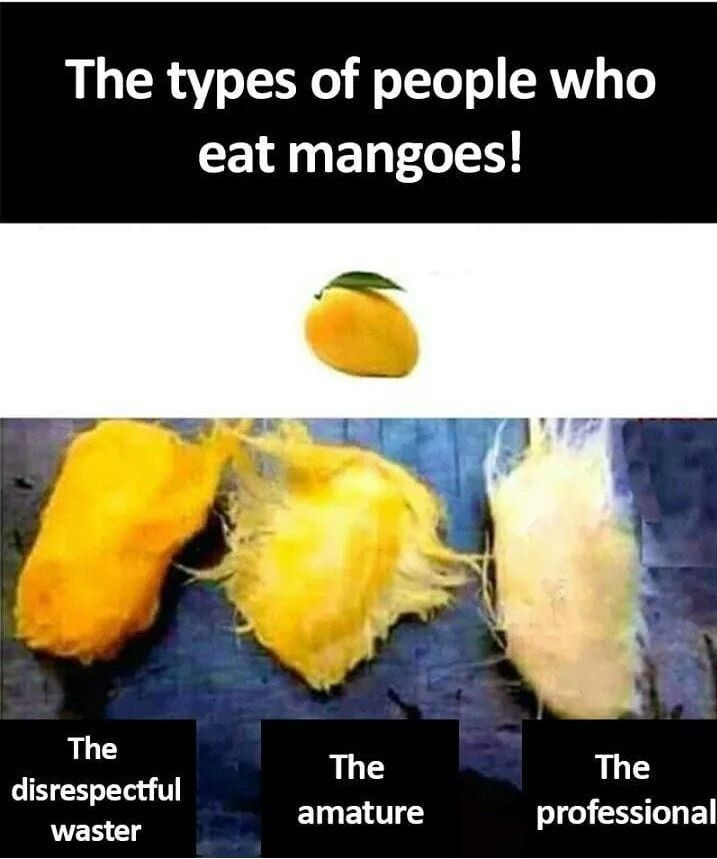Mango Funny Quotes For Kids Funny School Jokes