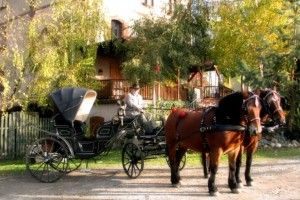 Horse-drawn carriage ride  tel. tel. (+48) 500-756-211