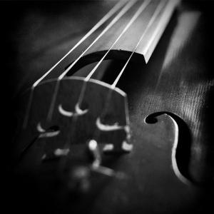 Activities to help develop children's musical intelligence.