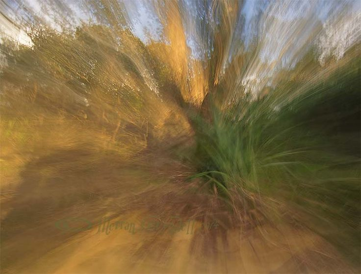 zooming #art #photography