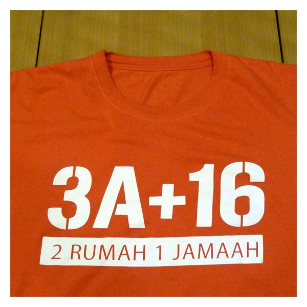 A tale of an office. Same team separated into different houses in a neighborhood. 3A and 16 are the house numbers. A t-shirt designed by me, October 2011.
