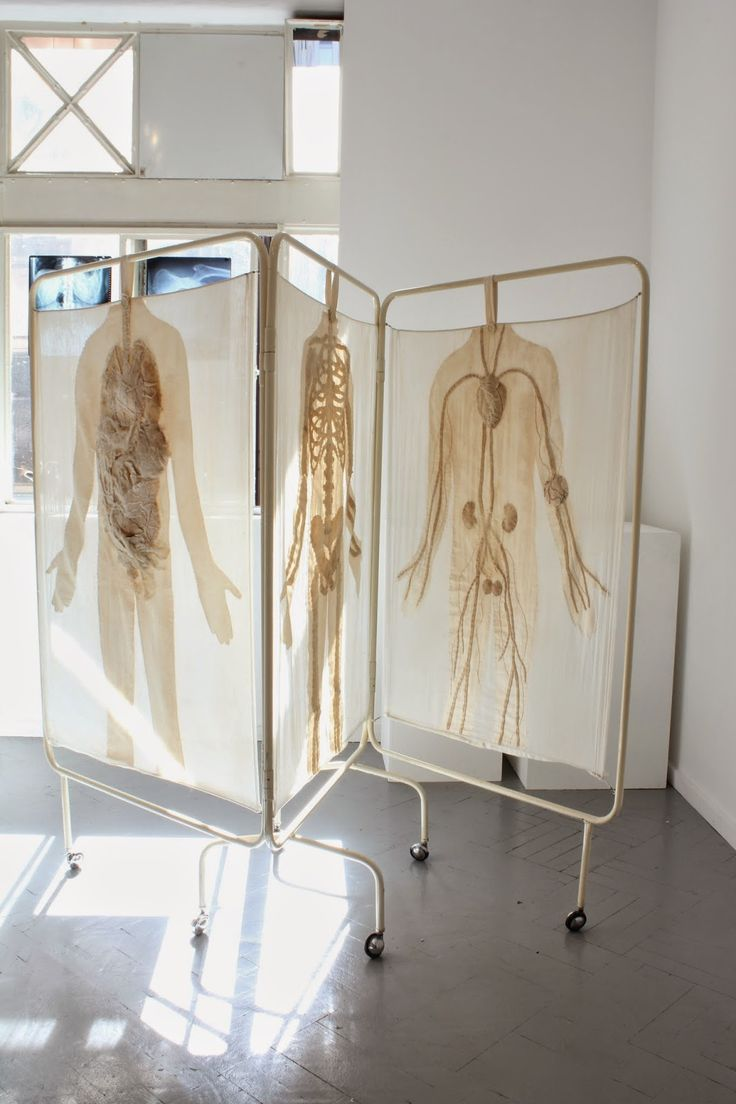 Specimen # 29.Hospital Screen .soft tissue anatomy sculpture by Andrew Delaney .Anno Domini Home . The Vivisector . Pic by Vikki Kassioras